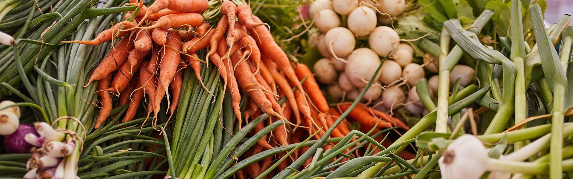 Recipe Index - CIA Dish for Foodies