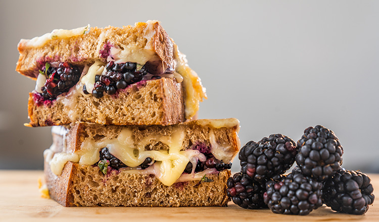 Blackberry and Fontina Grilled Cheese