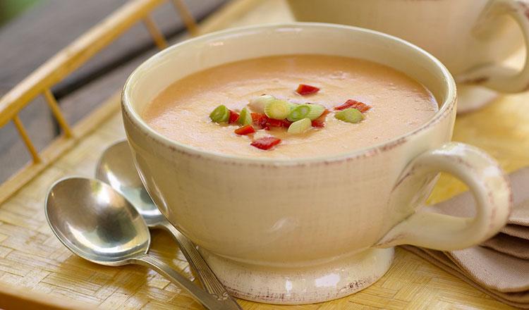 Pureed Soup