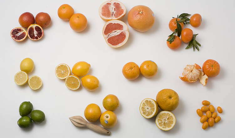 Group of Citrus Varieties