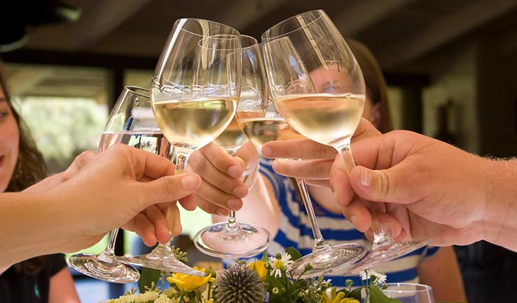 Toasting with white wine in glasses
